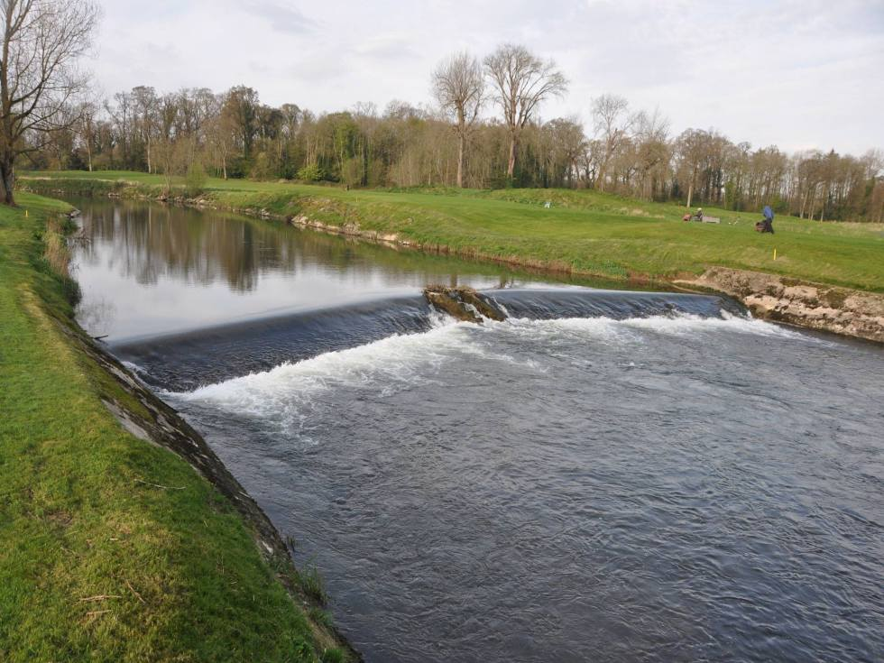 No sign of any elver traps on the River Maigue this week