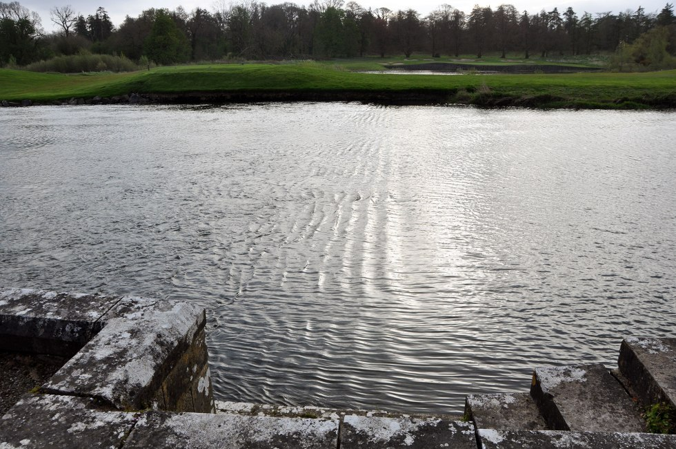 This is the tidal stretch of the River Maigue where IFI's elver traps are located. This is not a suitable site for a national elver monitoring programme. When the traps are flooded twice each day the elvers can escape.